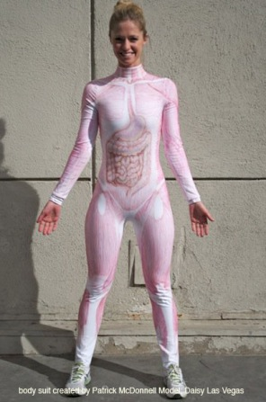 Perfect Anatomy Body Suit Illustration - Anatomy And Physiology ...